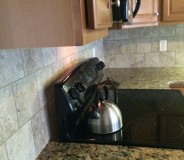 Custom granite tops and tile done by RMG